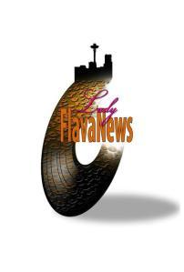 Flava News